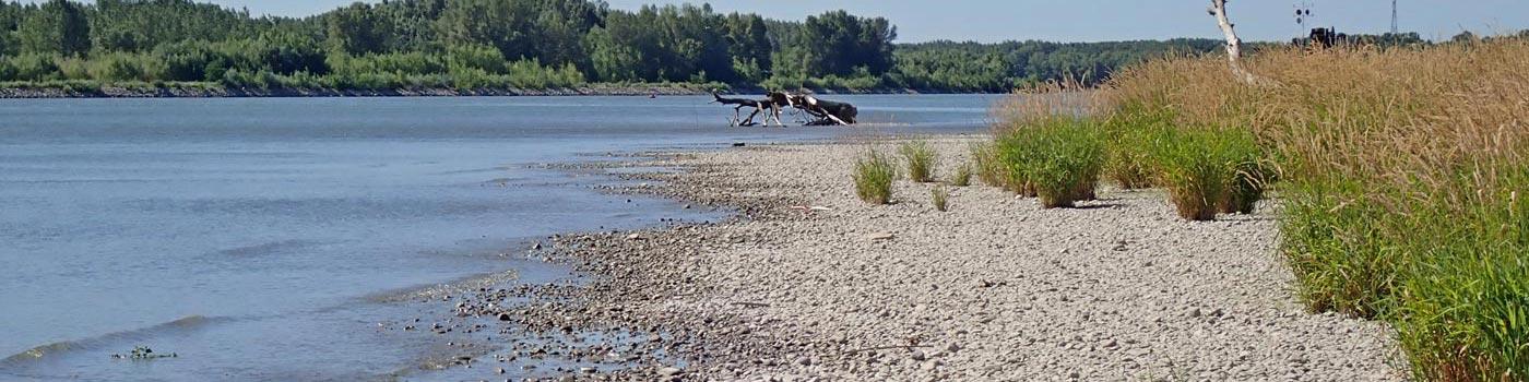 Kamenistá pláž rieky